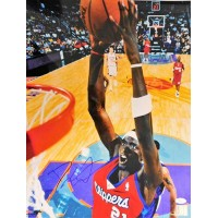 Darius Miles Los Angeles Clippers Signed 16x20 Glossy Photo JSA Authenticated